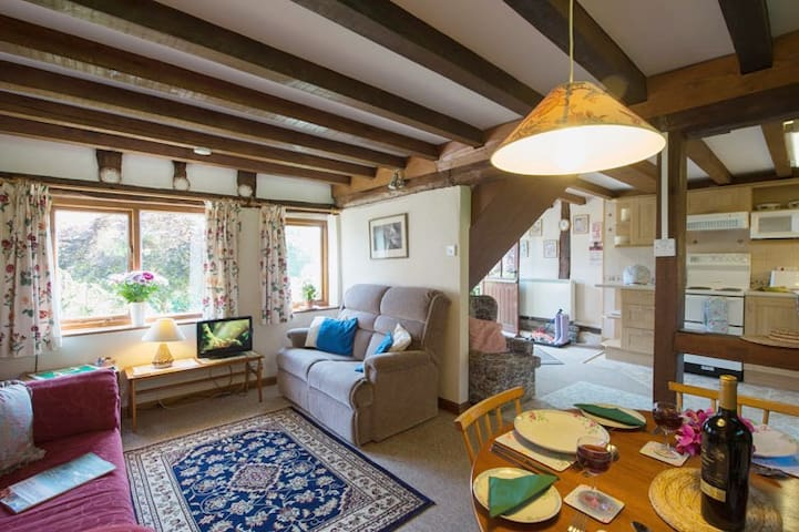 Jinney Ring's living / dining room with views over the courtyard garden.