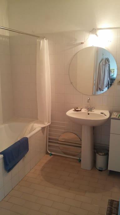 Salle de bain séparée avec baignoire