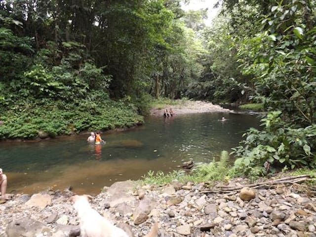 CAMPING COSTA RICA-northern zone - Heredia Province - Tent