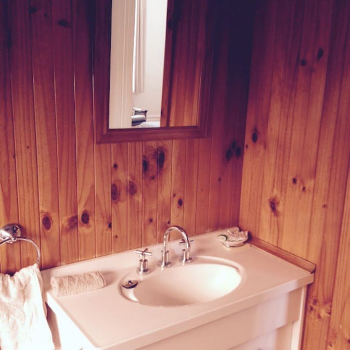 The bathroom has a separate shower, toilet and hand basin.