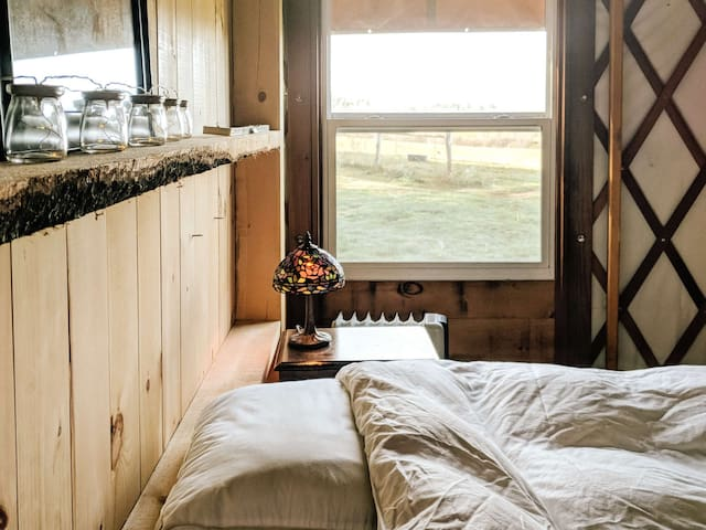 Queen bed with a view.