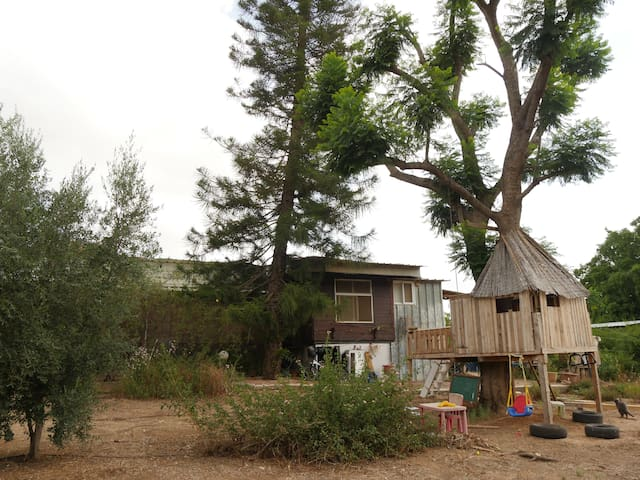 Lots of nature- close to town - Kfar Malal - Haus