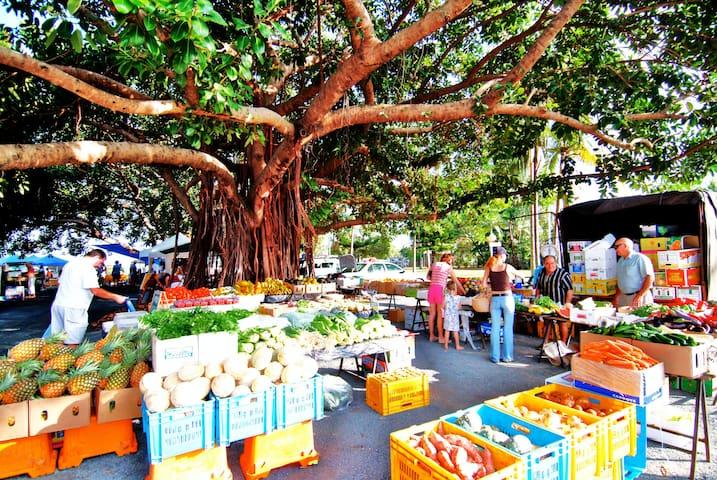 Port Douglas Markets - every Sunday