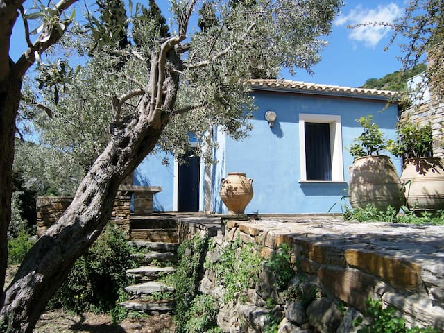 The Blue House - Apikia
