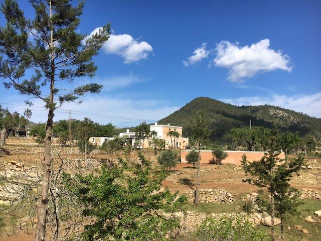 Habitación y coche en finca payesa en el campo. - Cala de Sant Vicent - Apartment