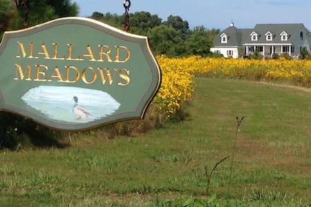 Mallard Meadows Apartment