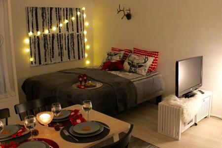 A cozy Scandinavian condo in the city center
