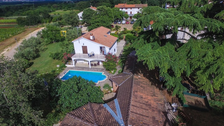 Four bedroom House, in Porec, Outdoor pool