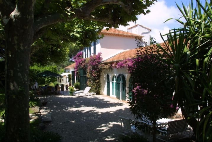 Beautiful provencal Villa in Cap d`Antibes