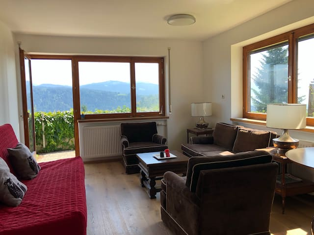 Ground floor of my house - panoramic mountain view