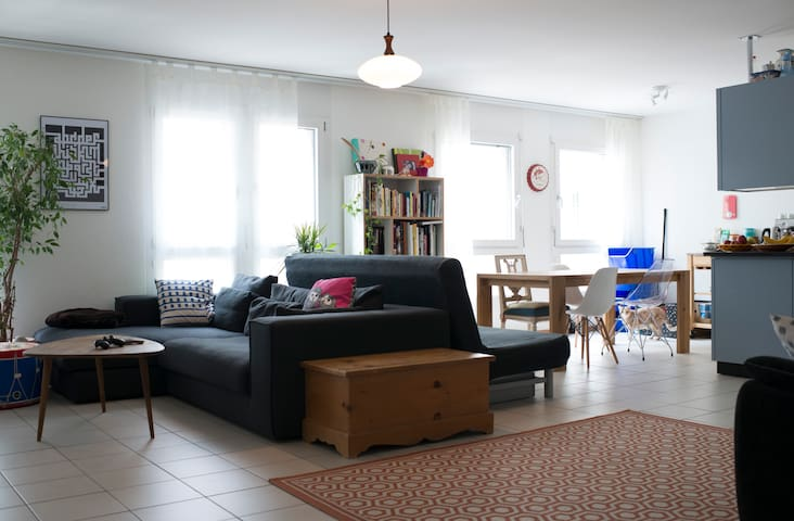 Large cozy appartement in central Vevey - Vevey - Byt