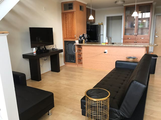 Downtown Luxury 2 Floor Apartment