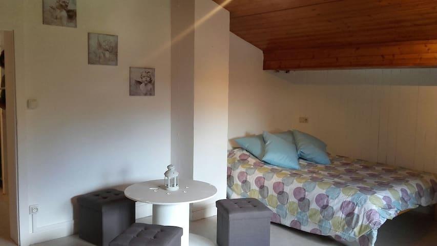 Appartement entre lac et Mont Blanc aux Praz - ชาโมนิกซ์ - อพาร์ทเมนท์