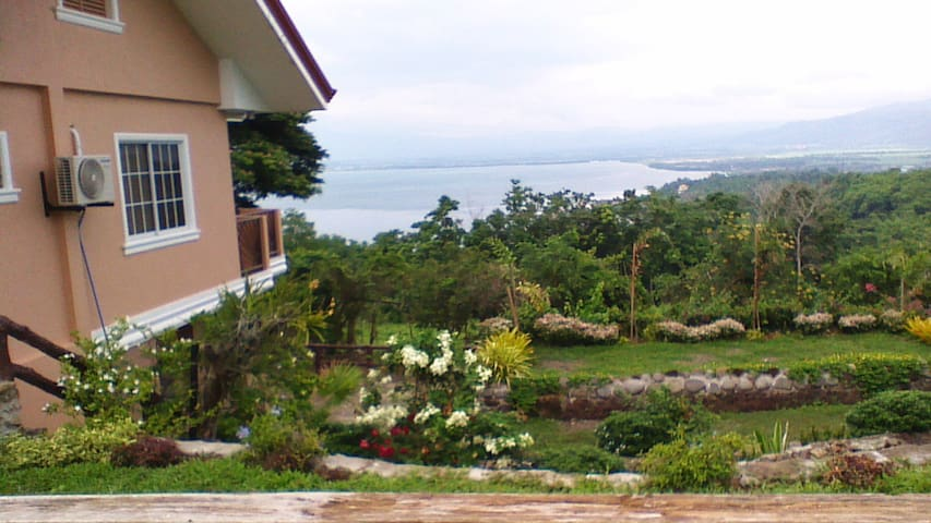 That's the garden next to the house, with a view of the Bay