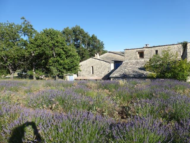 Grande maison provençale au Milieu de la Lavande - Aubenas-les-Alpes - Huis