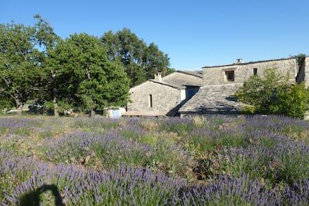 Grande maison provençale au Milieu de la Lavande - Aubenas-les-Alpes - 단독주택