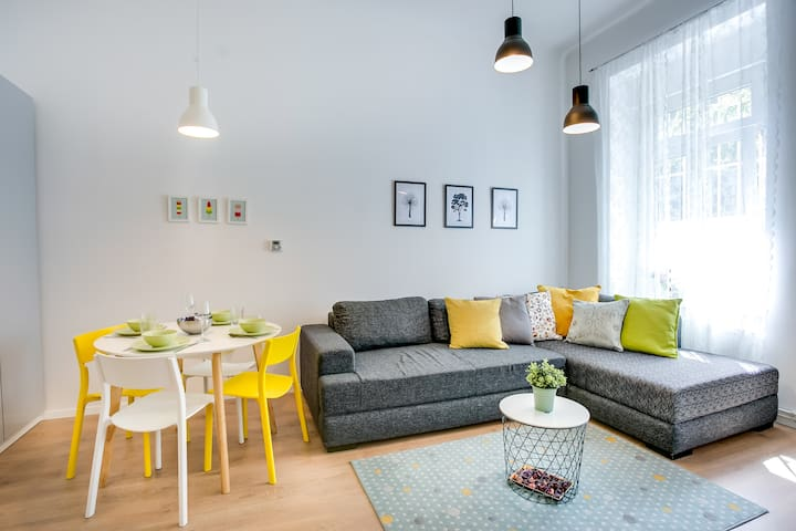 Cozy downtown apartment