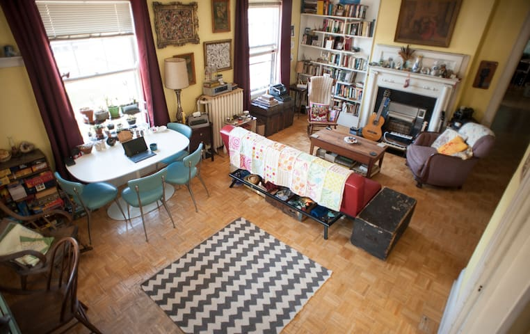 Large, Sunny Room in Eclectic Apartment Downtown - Madison - Apartment