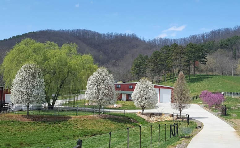 The Loft at Walnut Hollow - Hayesville - Loft