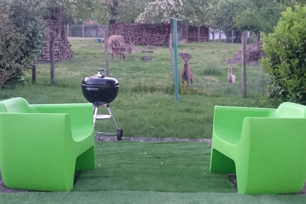 TERRASSE PRIVATIVE , BARBECUE,  PARC AVEC ANIMAUX(DAIMS)