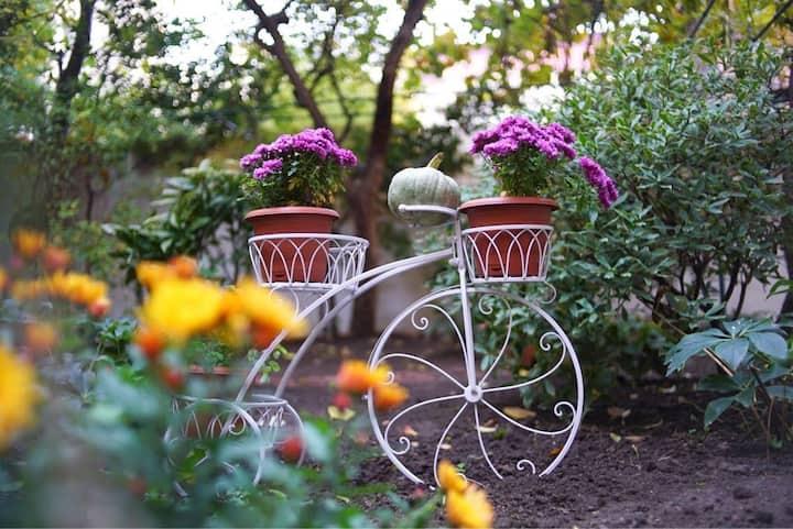 City Garden Tbilisi
