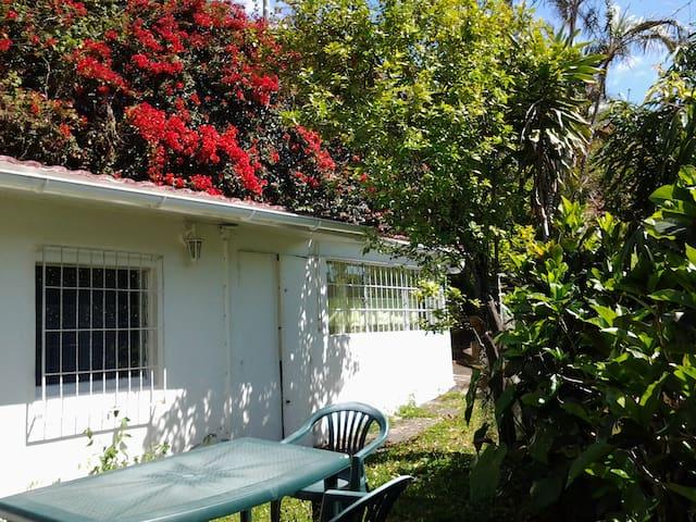 Petite maison 45 m2 dans mini jardin maisons louer - Maison jardin toulouse location saint denis ...