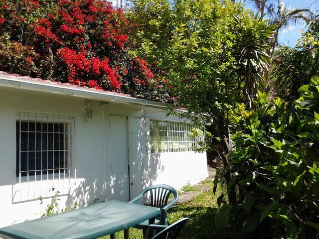 Petite maison 45 m2 dans mini jardin - Сен-Дени - Дом