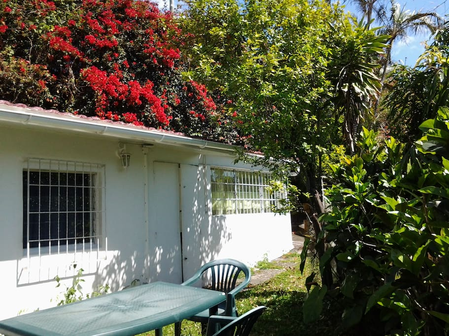 Petite maison 45 m2 dans mini jardin maisons louer saint denis saint denis r union - Jardin potager bio saint denis ...
