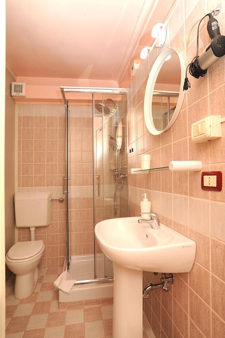 The shower/wc