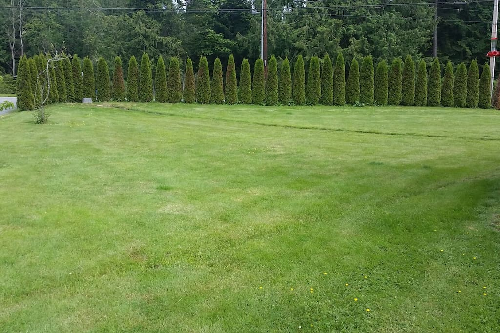 Yard in front of the house towards Miller Road