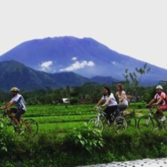 Moun Agung View