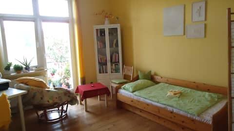 Großes Balkonzimmer mit Gartenblick (zentral)