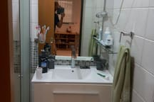 the toilet and shower room