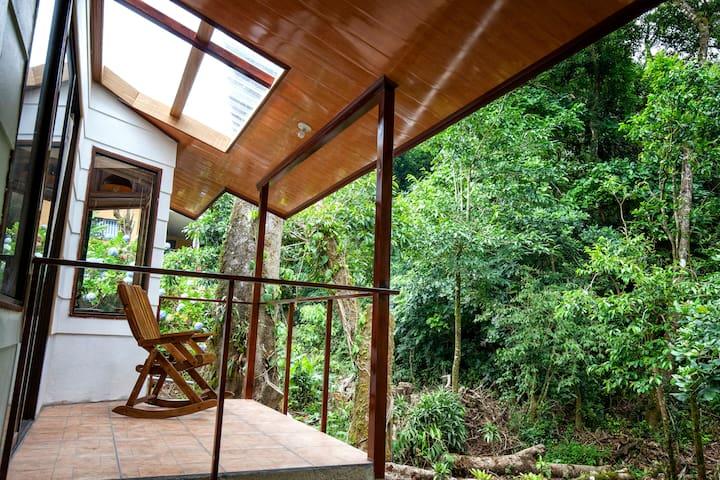 Casa  Balbi - Forest Studio