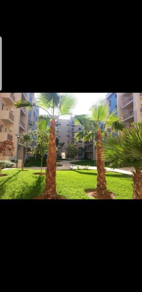 Superbe Appartement en plein centre ville Oujda