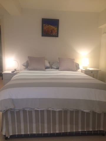 Lovely large en-suite double bedroom - Chiswick