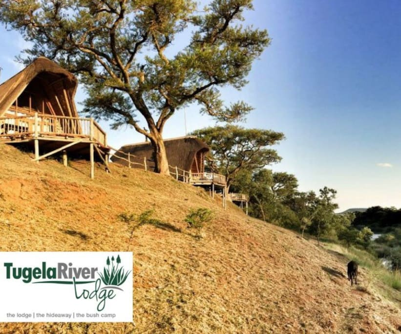The Main lodge cottages on the banks of the Tugela River