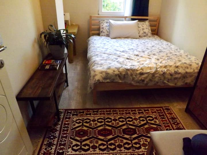 Beautiful room & own toilet in downtown apartment