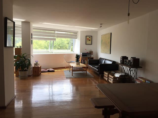 Private room in leafy and buzzing Condesa