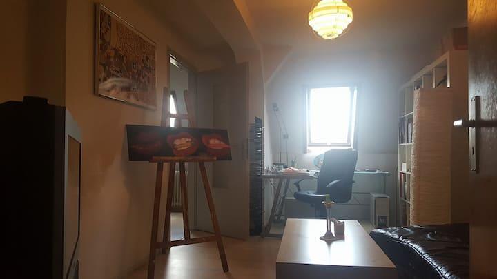Zentrale 2 Zimmer Studentenwohnung