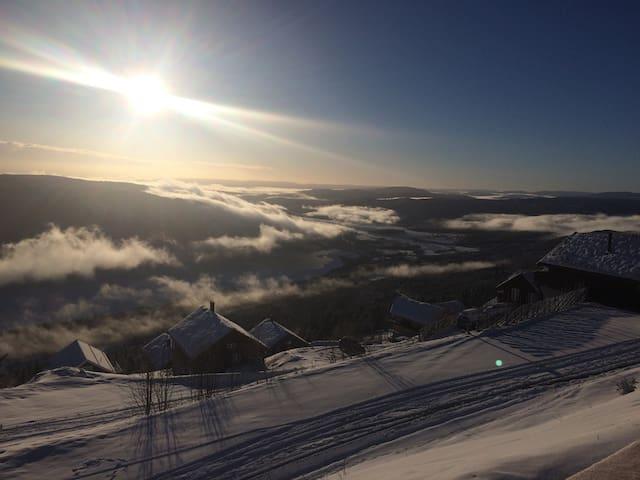 Nybygget leilighet med ski in/out - Norefjell - Stuga
