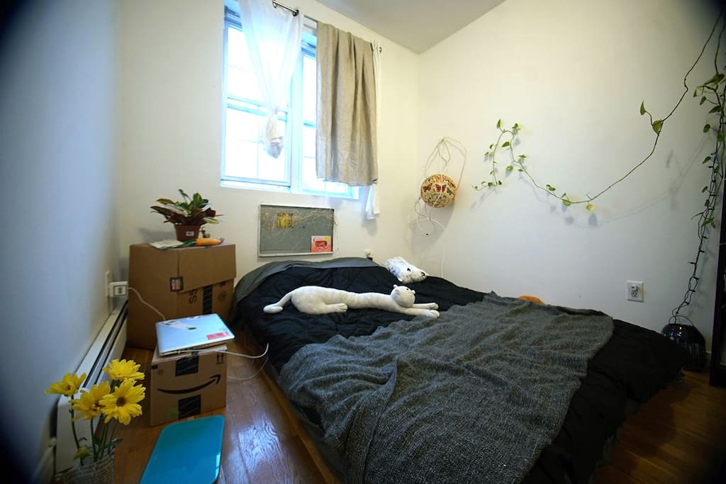 Big room with private bathroom in bushwick apartments for Rooms for rent in nyc with private bathroom