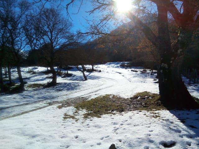 Chalet in montagna Casa delle Volpi - Collesano
