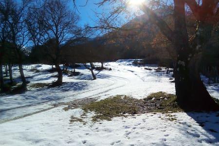 Chalet in montagna Casa delle Volpi - Collesano - Cabin