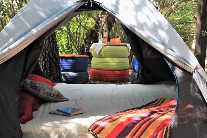 A quiet camping in a permaculture farm
