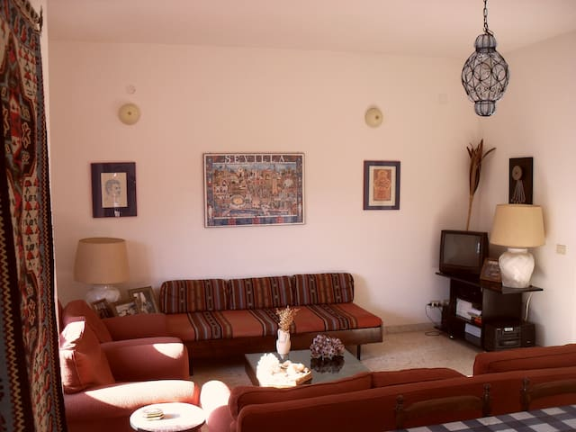 Centralissimo appartamento signorile - Sabaudia - Apartment