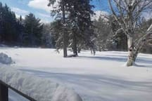 Snow snow and more snow!
