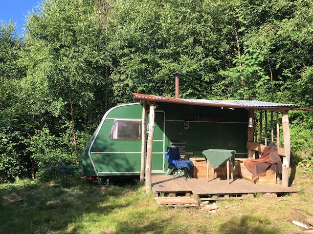 Quirky woodland caravan in Exmoor borders. - Maundown - Camper