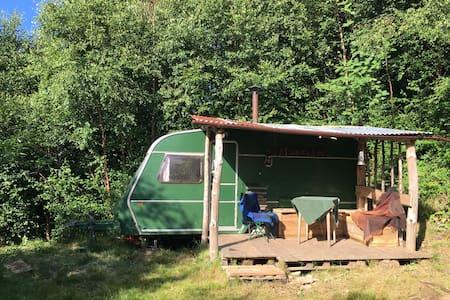 Quirky woodland caravan in Exmoor borders. - Maundown