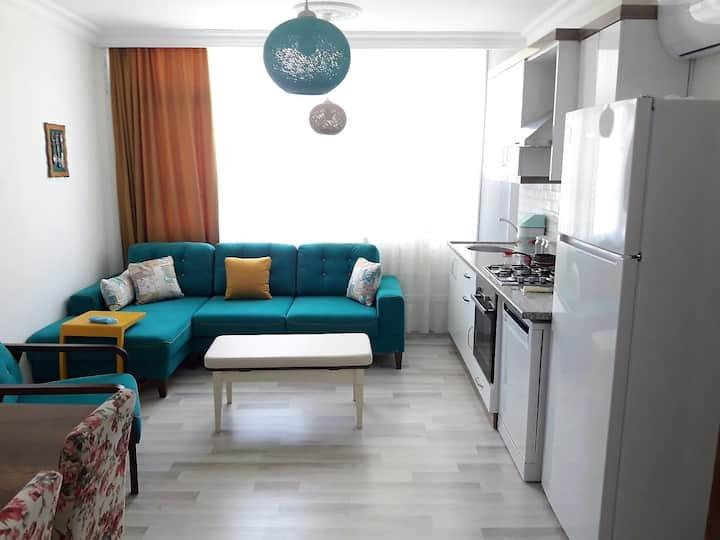 Cozy Brand New Furnitured Aprt